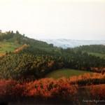 tuscany_19